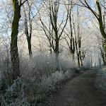 2007-12-22 - Winter