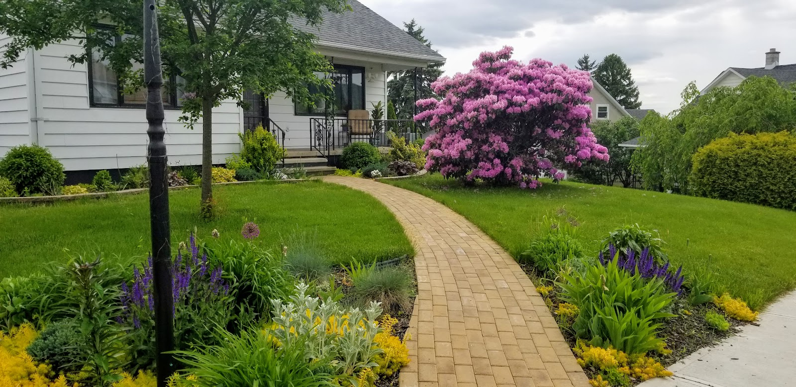 May 25 2019 late spring view