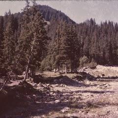 1984 Sommerlager - Sola84_341