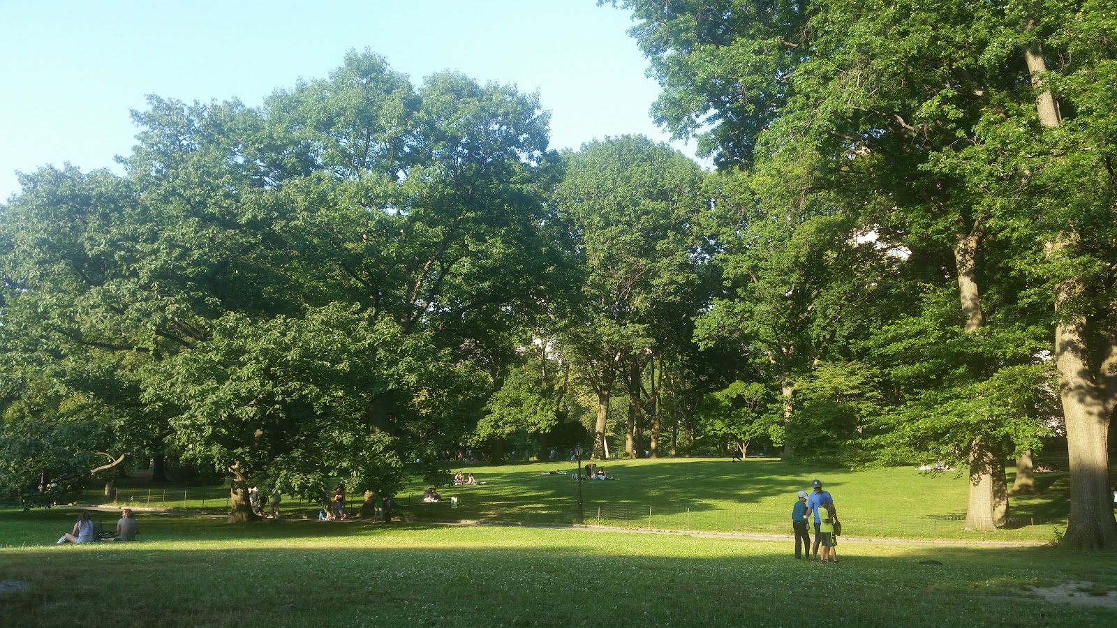 Relaxing in Central Park