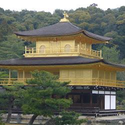 2008 - Japon