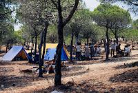 camp.verano86_manada (4)