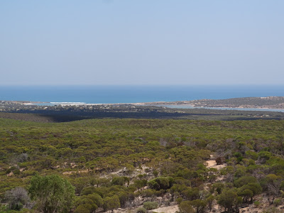 Lookout with Kalbarri in the distance