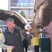 Opening Speeltuin en Roofvogelshow 17 maart 2007 - Nr_011