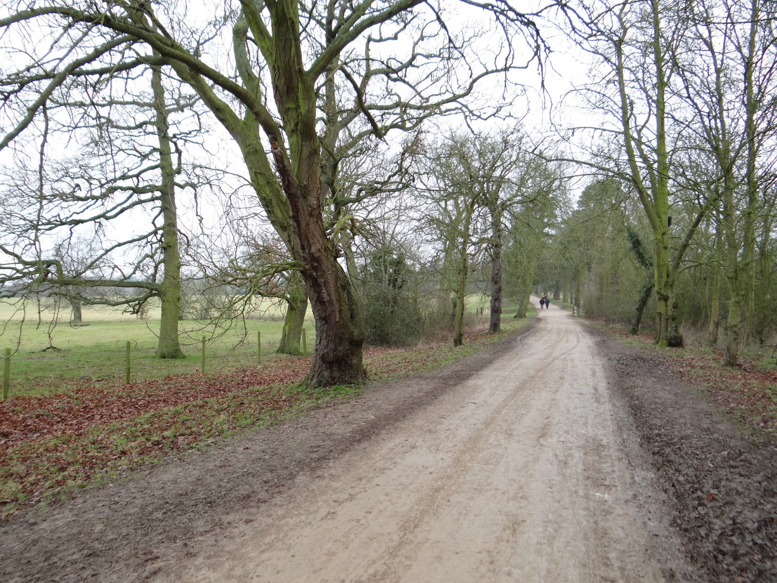 Towards the Bell Gate