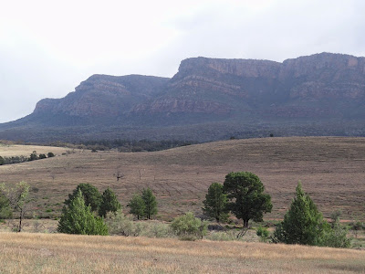 First sight of Wilpena Pound