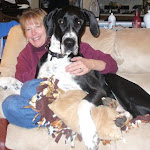 Rico the lap dog!