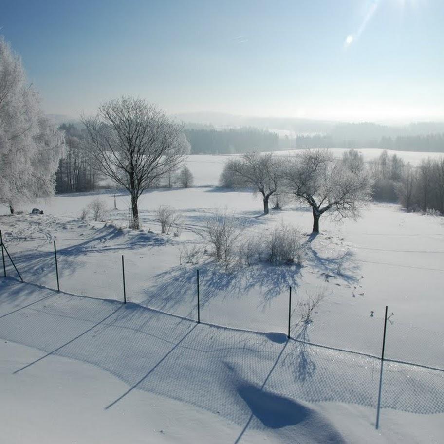 Ladovská zima 2010 - DSC_1584