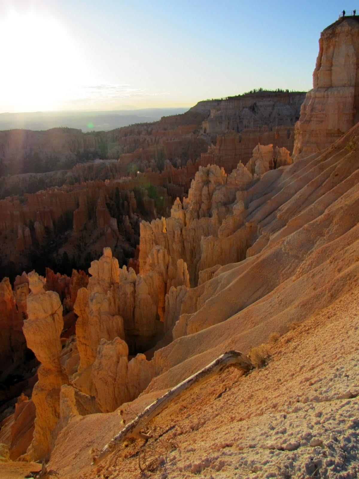 The Bryce Canyon continues far away