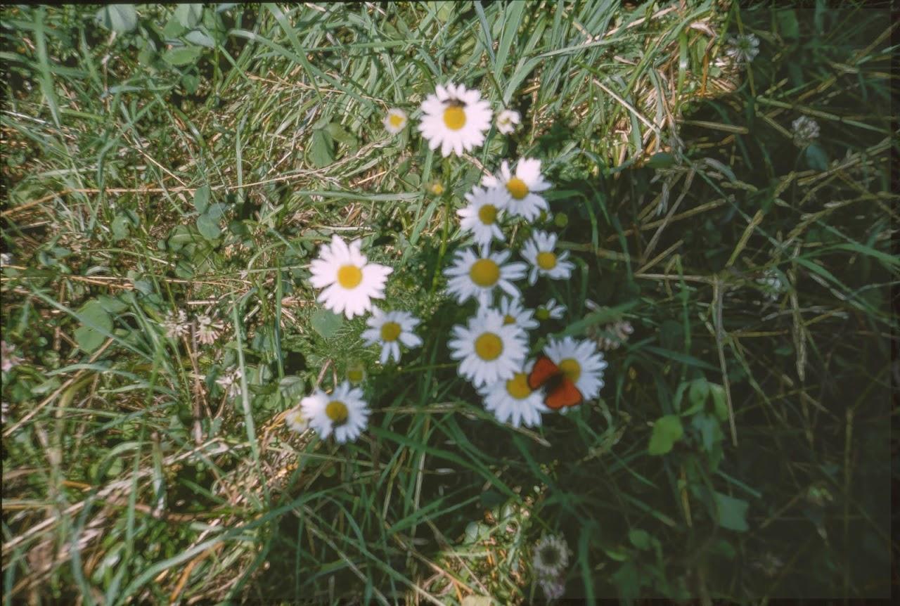 1995 Sommerlager - Sola95_033