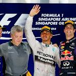 2014 Singapore podium: 1. Hamilton 2. Vettel 3. Ricciardo