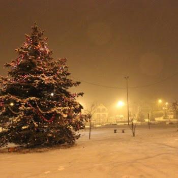 2012-12-20 Choinka na Górkach