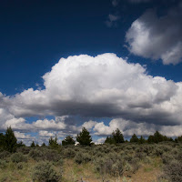 PageSprings_3__7