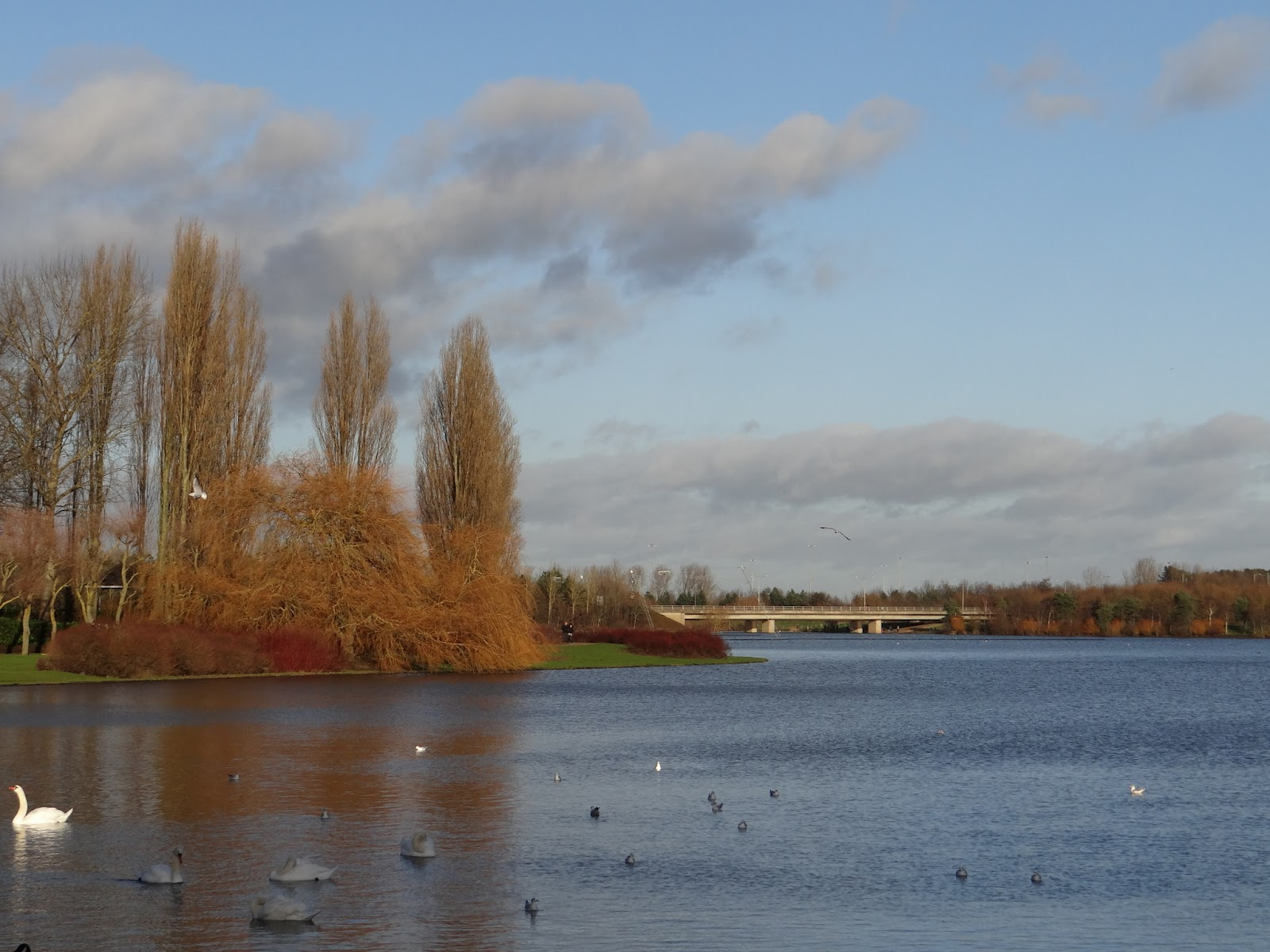 Willen South Lake