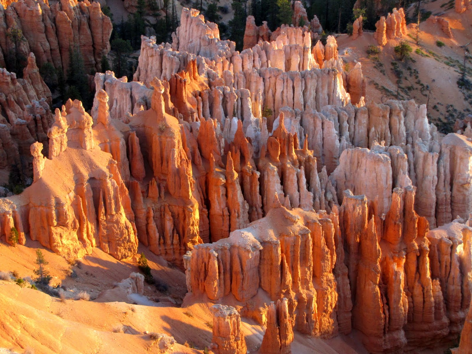 Colorful Columns of Bryce