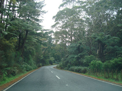 The roads!
