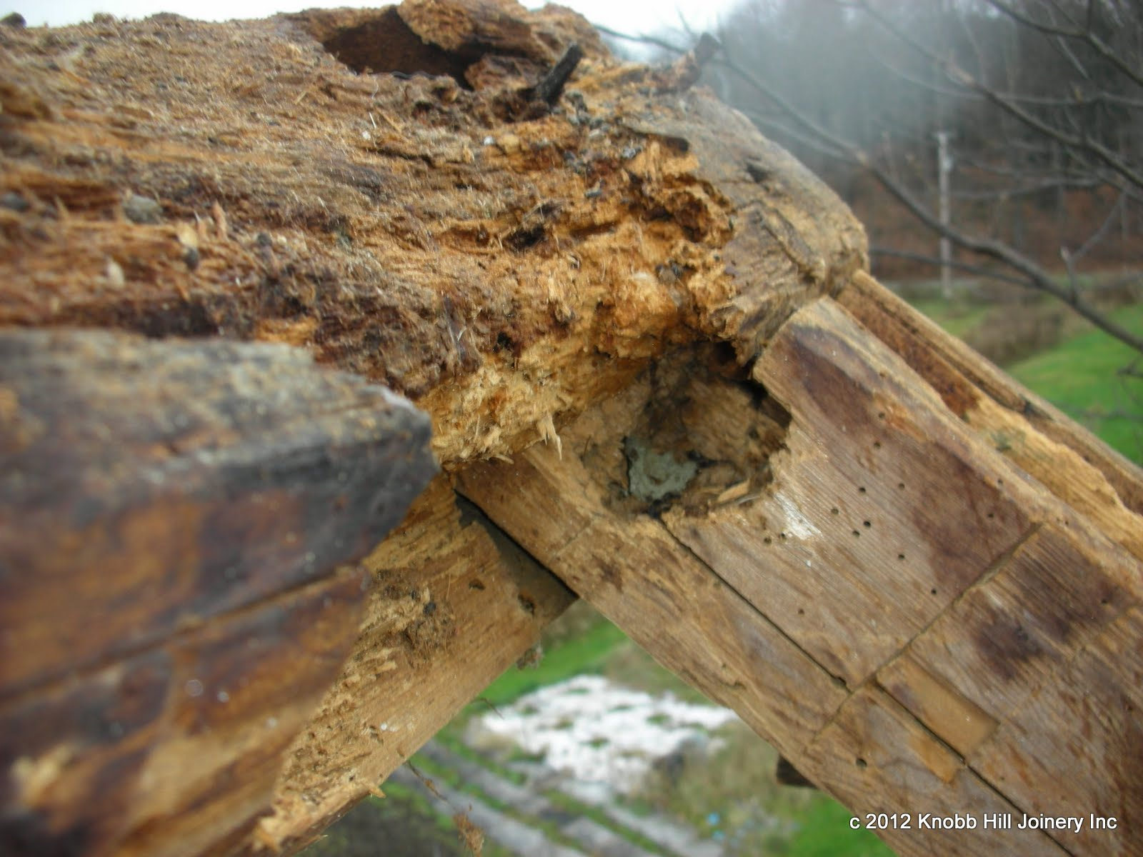 A combination of rodent damage and rot caused some of the worst damage to a ridge that we have ever seen.
