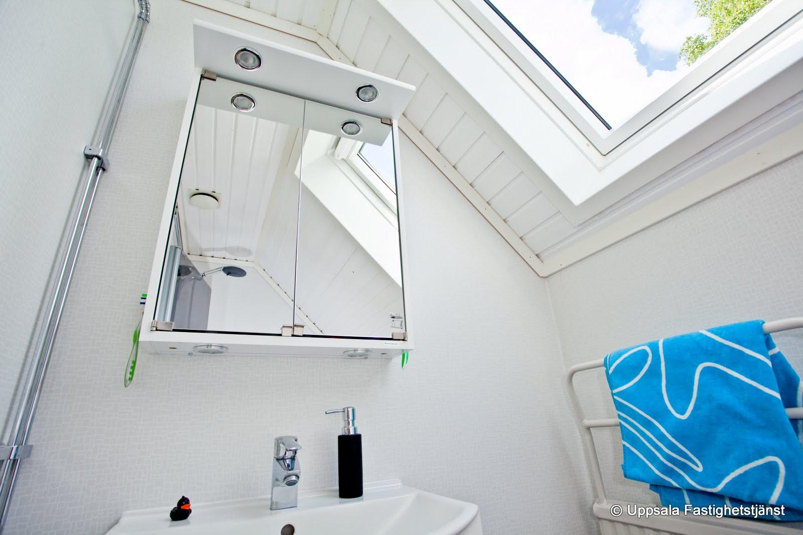 Badrum takfönster