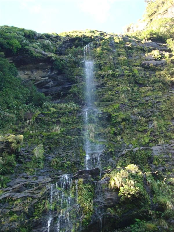 A waterfall in Crooked Arm, Doubtful Sound