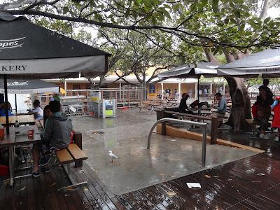The rain came!