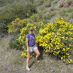 These flowering bushes were everywhere once we got up around 4000 feet
