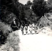 campamento Patrulla Koala (2)
