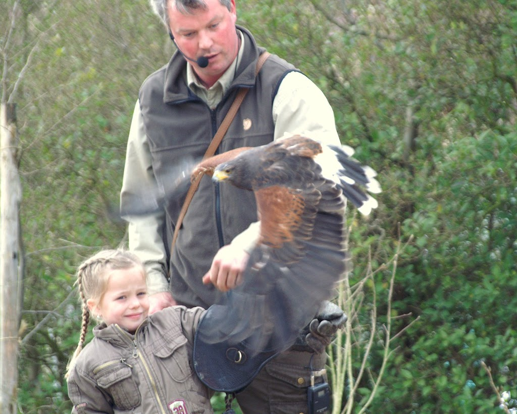 Opening Speeltuin en Roofvogelshow 17 maart 2007 - Nr_130