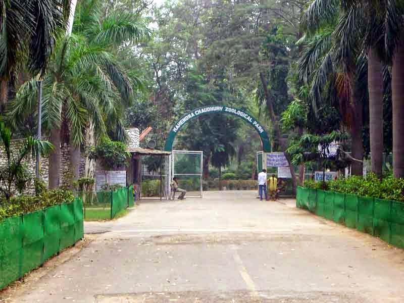 entrance of Chattbir zoo Chandigarh