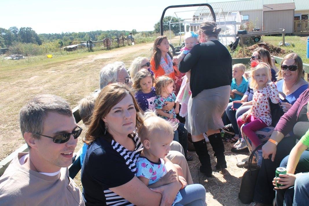Northgate at Mini Miracles Farm 2016