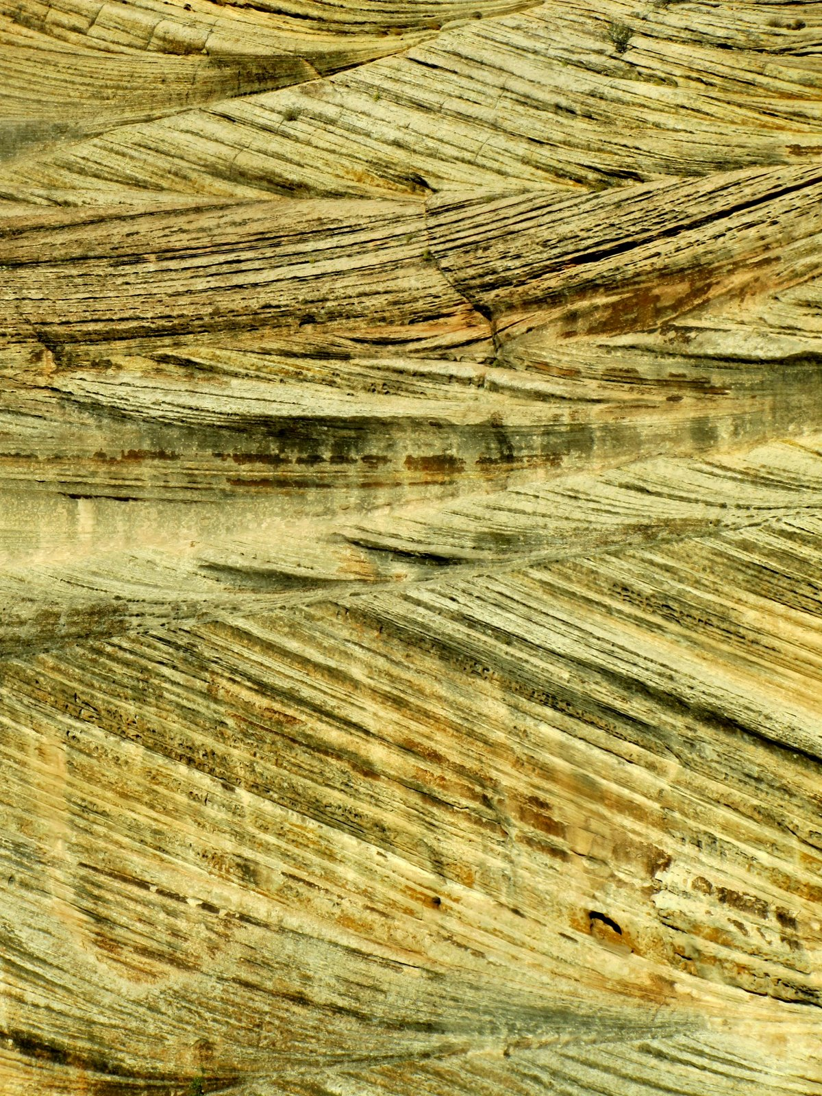 Mikroszkópikus felvétel a szikláról, de mégsem, ez legalább 10 m magas  Microscopic Closeup - No 🙂 It's more than 10 meters