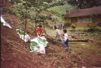 1994 - Little Helpers 3