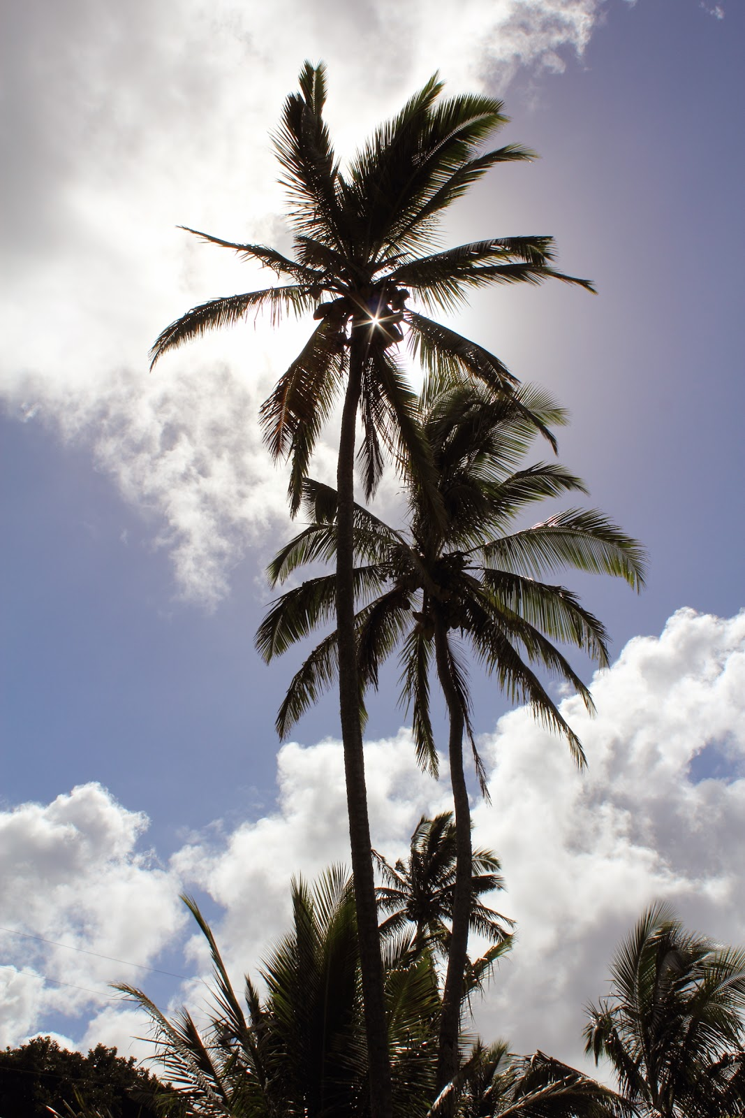Keanae (Nua'ailua Bay)