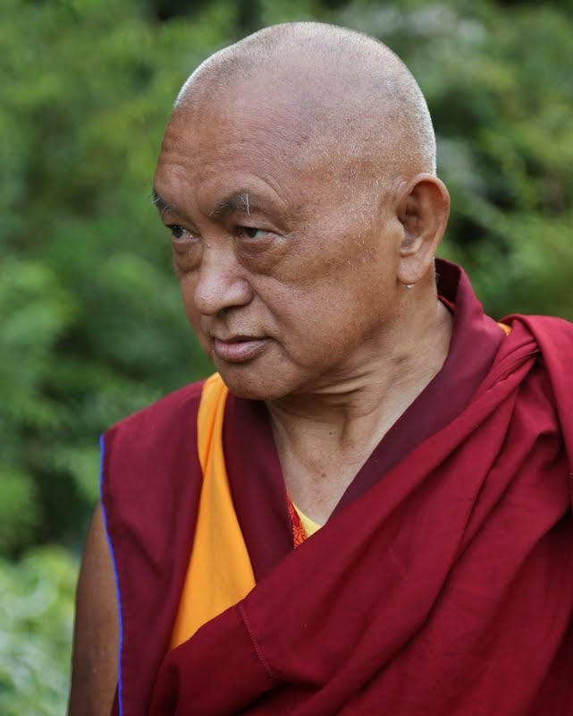 Lama Zopa Rinpoche at a garden in Leeds, UK, July 2014. Photo by Ven. Thubten Kunsang.