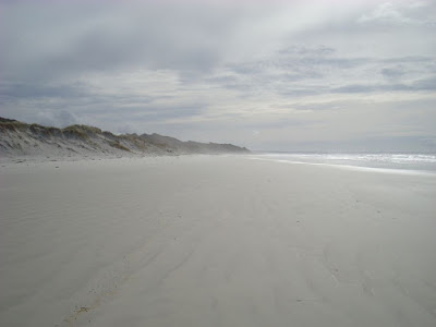 A beach all to myself for lunch (Rarawa Beach)