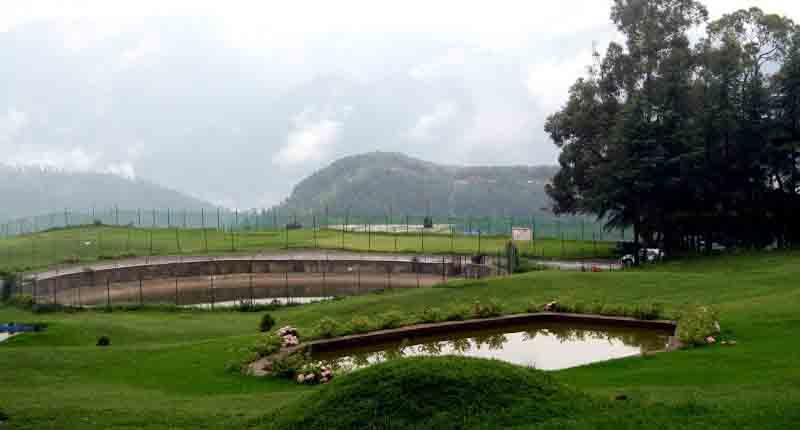 Golf Course in Naldehra