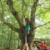 Na vrcholu jsme po chvíli lokalizovali onu ingredienci - rostla tu na stromě