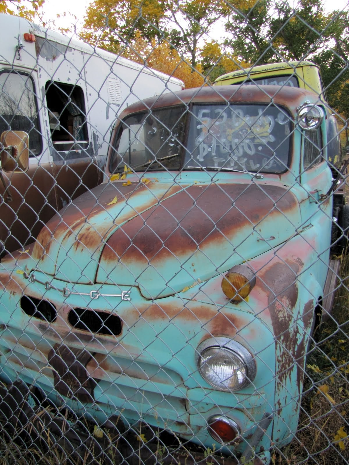 Dodge pickup, 1953 Dodge B4B