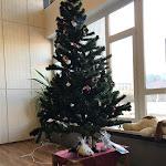 A karácsonyfa, melyet a gyerekek díszítenek fel