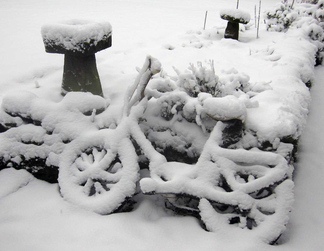 Winter 2012/2013