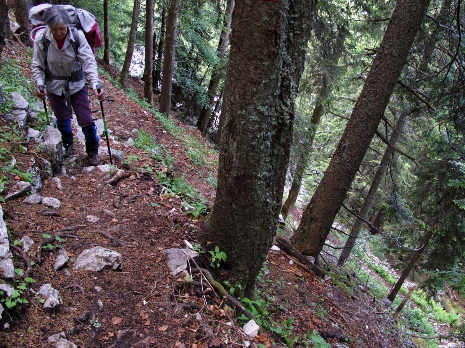 Raide grimpée vers le Risoux