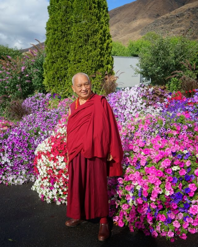 Lama Zopa Rinpoche in Washington, US, July 2014. Photo by Ven. Roger Kunsang.