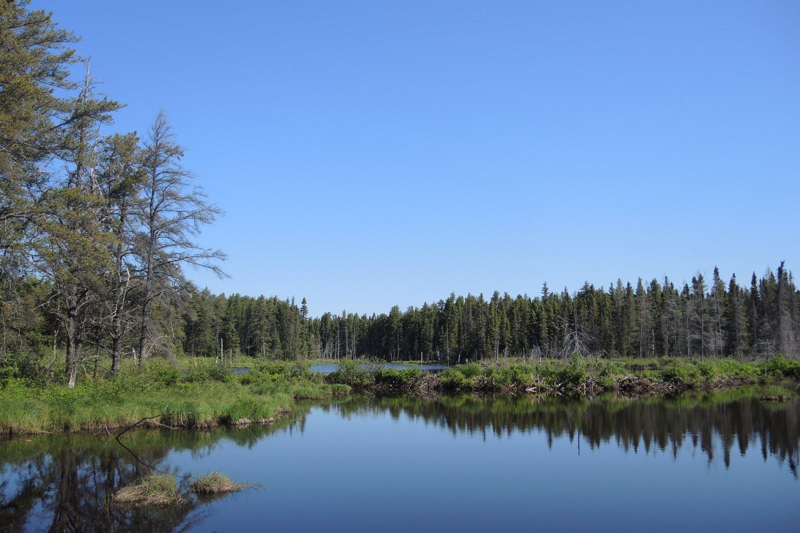 Dans le parc national de la Pointe Taillon