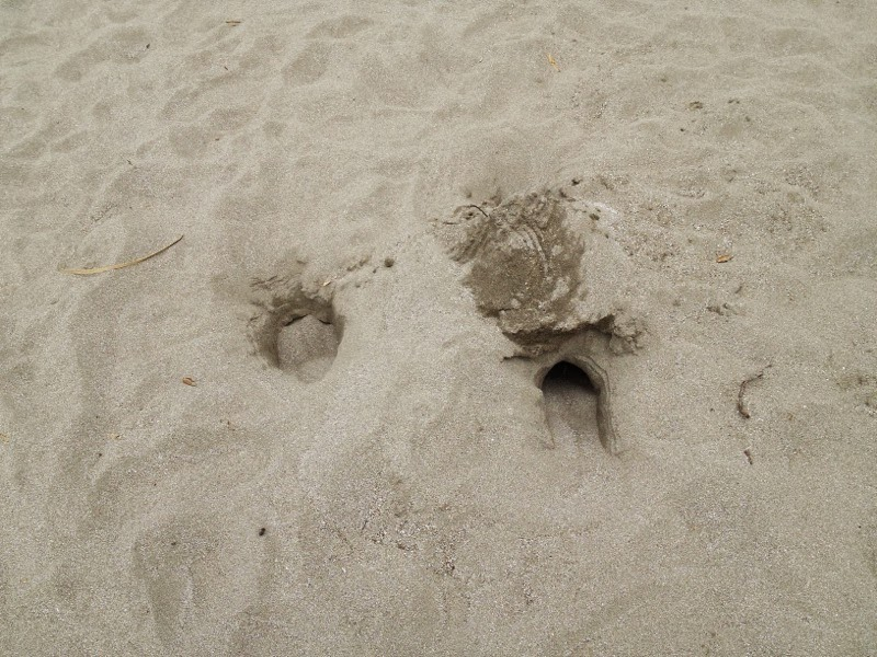 not much left of my sand castle and hole :(