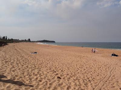 Narrabeen beaches