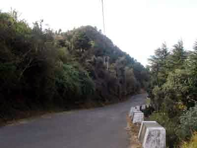 Road around Sunrise Villa Shimla