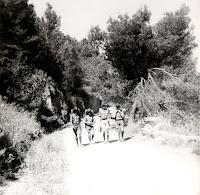 campamento Patrulla Koala (3)