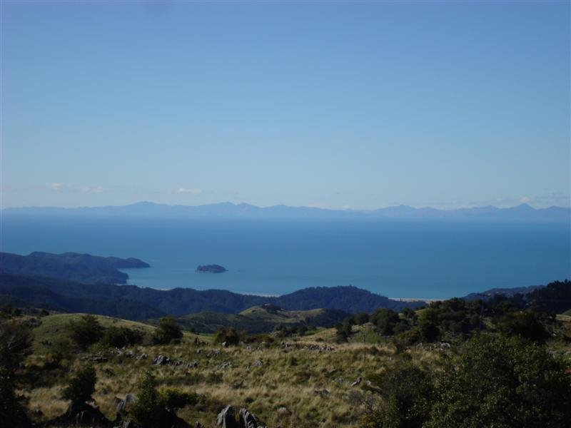 The view from our Coffee Shop at the top of the Tutakaka Hill