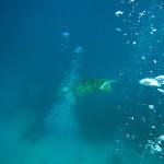 Dive Trip - 9 May 11 to 11 May 11