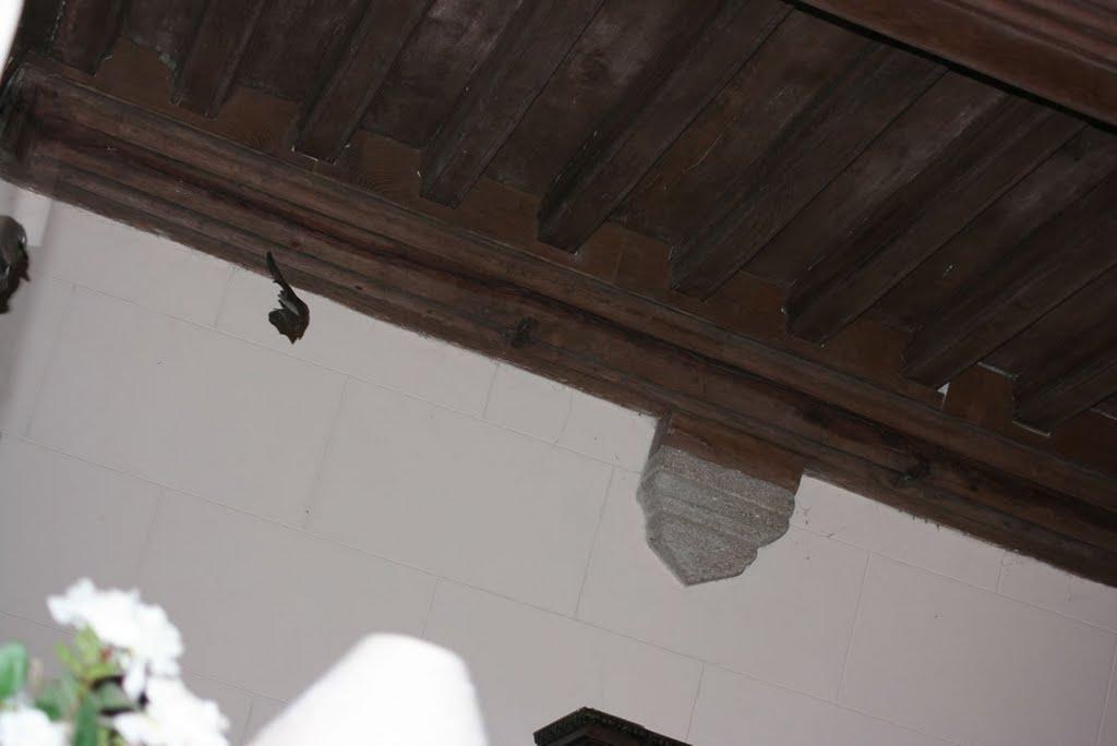 Une chauve souris dans le château