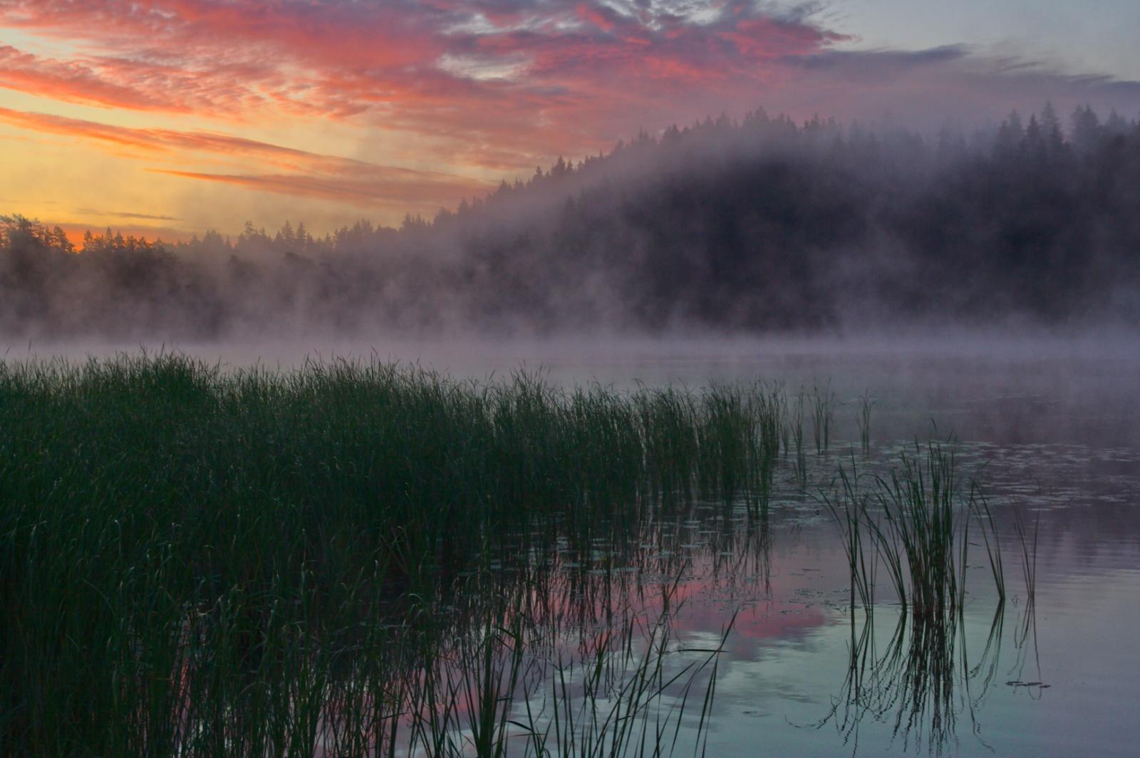 Early morning fantasy